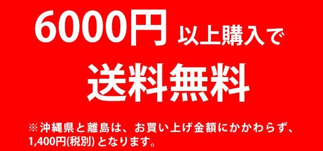 6000円以上購入で送料無料